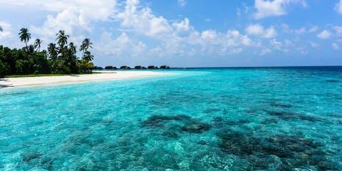Paradise beach and crystal blue sea