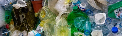 Crushed plastic bottles for recycling